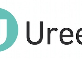 Director of Operations at Ureed