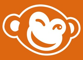 Business Intelligence Analyst at PicMonkey