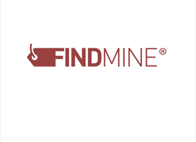 Front End / Web Developer at FINDMINE