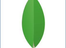 Enterprise Account Executive at MongoDB