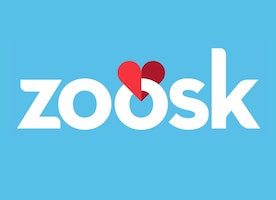 Digital Marketing Analyst at Zoosk