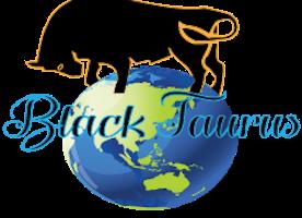 English teachers needed - China at Black Taurus Global