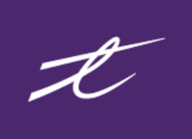 Frontend Developer at TELUS International