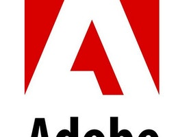 Performance Marketing Assistant Intern at Adobe