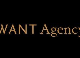 Sales Intern at WANT Agency