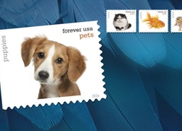 The Best Places To Buy Stamps?