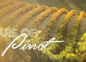 Update on the Stars of Pinot at Hotel Sofitel West Hollywood and 7 Reasons for the 4th Annual in 2018