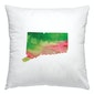 Connecticut watercolor pillow in pink and green