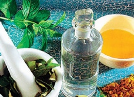 Herbal Skin Care Products — Fad or Necessity
