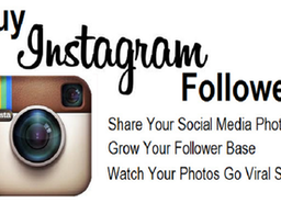Buy Instagram Followers for Your Business