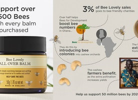 HELP US SAVE THE BEES