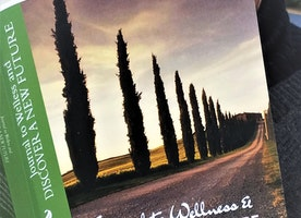 JOURNAL TO WELLNESS