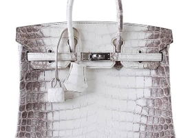 HERMES BIRKIN Bag 25 Himalaya Blanc Crocodile Palladium Hardware