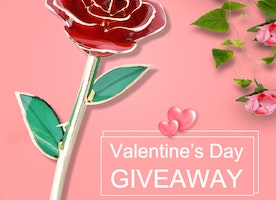 WIN $50 Cash and a Dipped Gold Rose for the One You Love!  Time Limited!