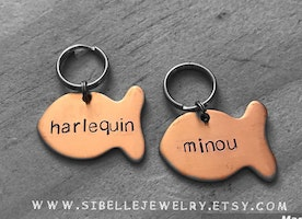 Custom fish ID tag for cats