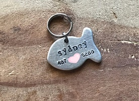 Cat ID tag with name and phone number