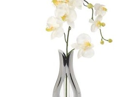 'Tulip' Bud Vase with Silk Orchid