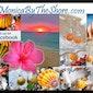 Hawaiian Sunrise Shell & Rare Seashell Jewelry