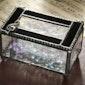 Black Opal and Musical Cleft Trinket Box Art Glass