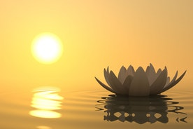 Finding your Meditation Mojo