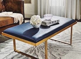 Chic Coffe Table/Bench $850