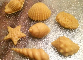 Keep Warm This Winter With A Little Bit of Summer...Seashell Wax Melts!