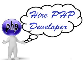 How to hire PHP Developer for  the development of business websites?