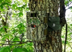 Check Out The Updated Features Before Going To Buy The Hunting Camera