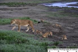 Tanzania Family Vacations