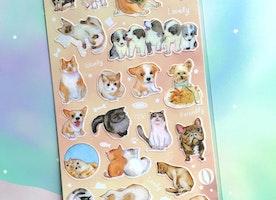 cute dog cute cat sticker Happy pet street cat kawaii pet dog street dog Sticker kitten puppy cuddle label icon scrapbook kids birthday gift