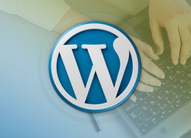 Benefits of Using WordPress Development for your Business