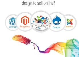 Needs an eCommerce Website Design Boca Raton Miami Florida