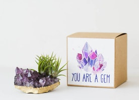You're a Gem Amethyst Crystal Air Planter