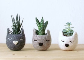 Animal Planters - Turn Your Flower Pots Into Cute Animals