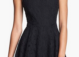 Cute 'Renley' Lace Fit & Flare Dress From BB Dakota