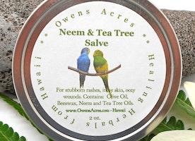 Healing Neem and Tea Tree Herbal Salve