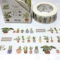 potted plant washi tape 7M Succulent plant fat plant Green plant Masking tape plant diary gardening planner sticker tape garden decor