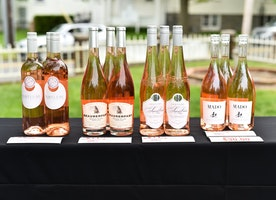 Jean Shafiroff Celebrates The Southampton Animal Shelter Foundation's 4th Annual 'A Taste Of Wine'