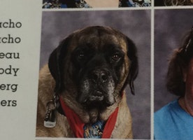Service Dogs Got Their Own Spots in a High School Yearbook