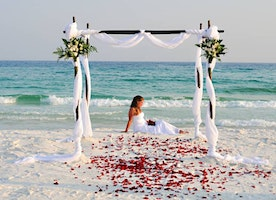 How Can Beach Marriage Ideas Make Your Wedding Unique?