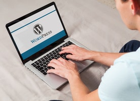 How To Use The WordPress In The Right Way?