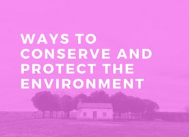 Ways To Conserve And Protect The Environment