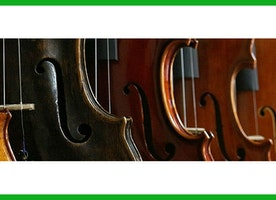 How to learn Violin Important Things About historical  music of violin