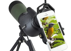 How To Choose A Spotting Scope for Birding