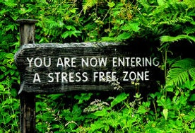 6 Things I Do to Keep Myself Stress Free