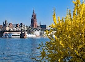 Merry Frankfurt: Top 10 Popular Festivals