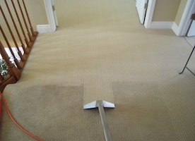 Common Carpet Issues And Their Solution