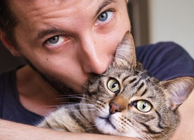 5 Tips for Being a Responsible Cat Owner