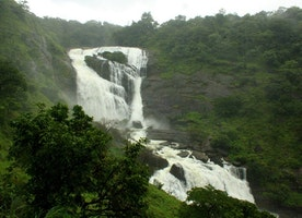 Top 5 Unique Things to Do in Coorg