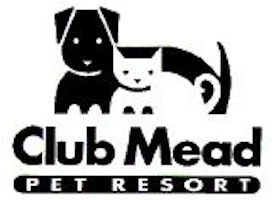 How to Run a Successful Dog Daycare Business?